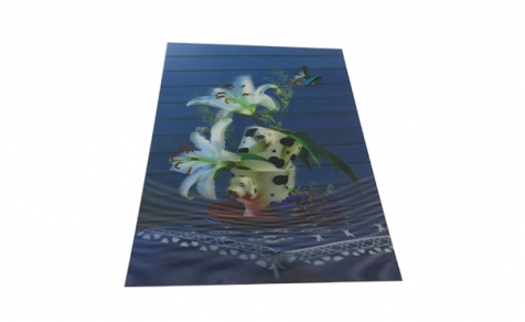A4 size lenticular poster