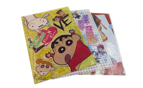Customized printed plastic file folder